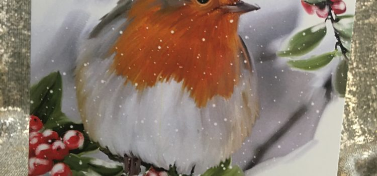 Charity Christmas Cards Stroud